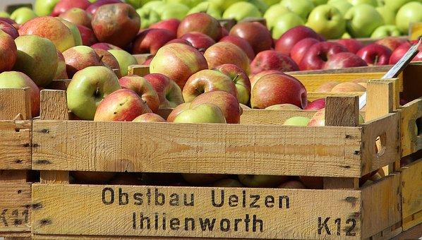 Apple, Apfelernte, Wooden Box, Market