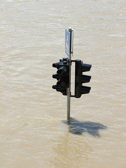 Traffic Light, Flood, Water, Danube, Stream, River