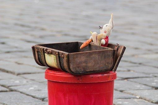 Box, Piggybank, Wooden Box, The Mascot, Collection