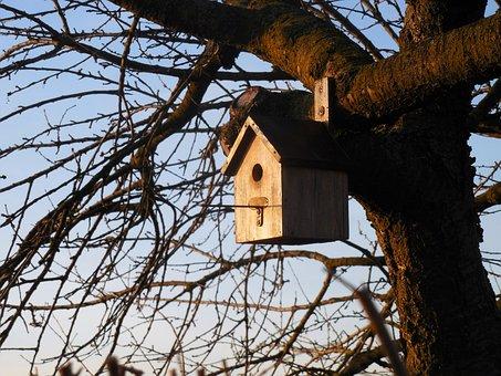 Aviary, Bird, House, Tree, Garden, Nesting Box, Nest