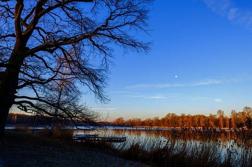Lake, Water, Jetty, Grass, Reed, Sky, Moon, Landscape