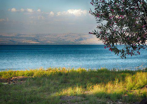 Sea, Sea Of Galilee, Galilee, Tabgha, Lake, Water
