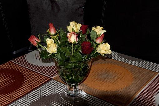 Roses, Vase, Bouquet, Living Room, Nature, Flower