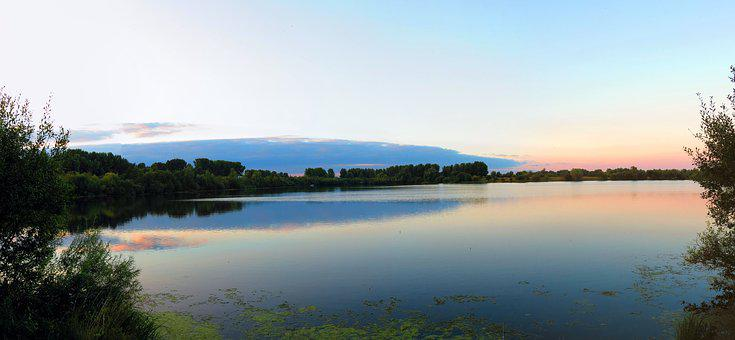 Roermond, Netherlands, Lake, Fish, Sunset, Water