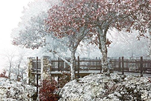Winter, Scenery, Fog, Mist, Nature, Landscape, Haze
