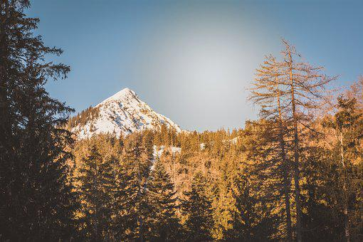 Landscape, Nature, Snow, Mountain, Trees, Forest