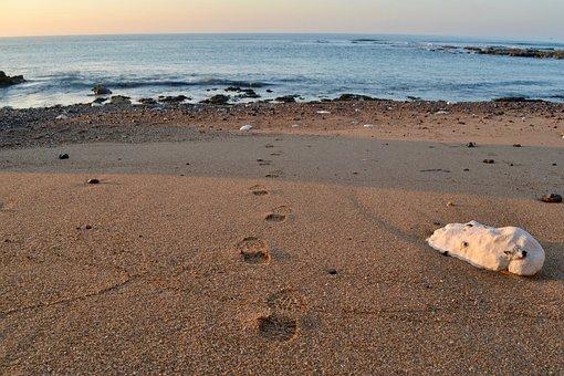 Footprints, Beach, Sand, Path, Track, Stones, Walking