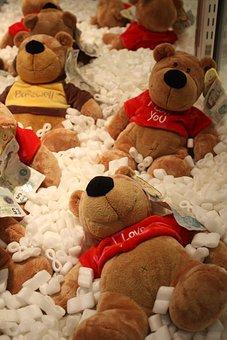 Teddy Bear, Prize, Win, Trophy, Bear, Cuddly Toy, Hug