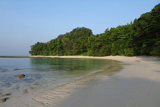 Beach, Sea, Radhanagar, Forest, Littoral, Coastal