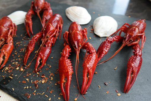 Boiled Crayfish, Eat, Food, Claw