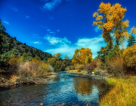 North Platte River, Wyoming, Autumn, Fall, Forest