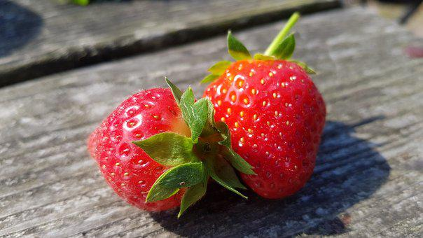 Strawberries, Fruits, Fruit, Red, Fresh, Food