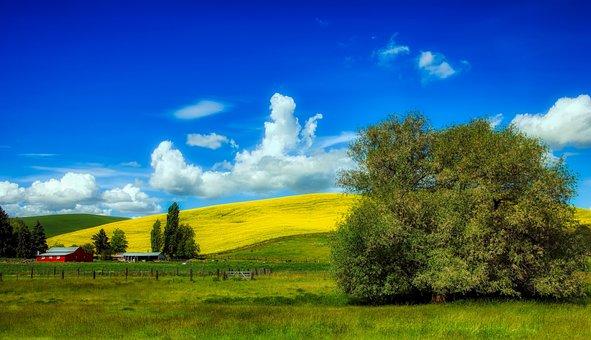 Idaho, America, Farm, Landscape, Scenic, Hills, Barn