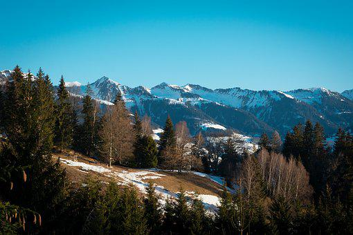 Outlook, View, Nature, Landscape, Snow, Spring, Trees
