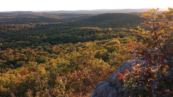 Trap Hills, Michigan, Up, Upper Peninsula, Forest