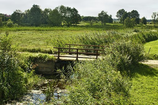 River, Bridge, Meadows, Landscape, Scrubs, Tykocin