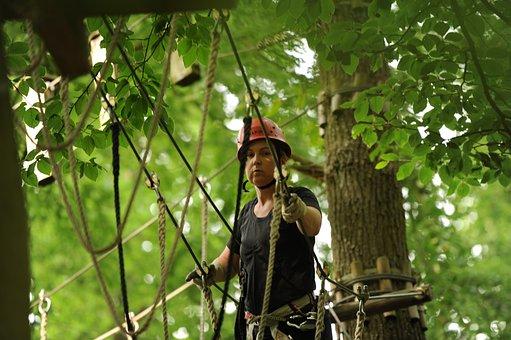 Climb, Climbing Forest, Climbing Park