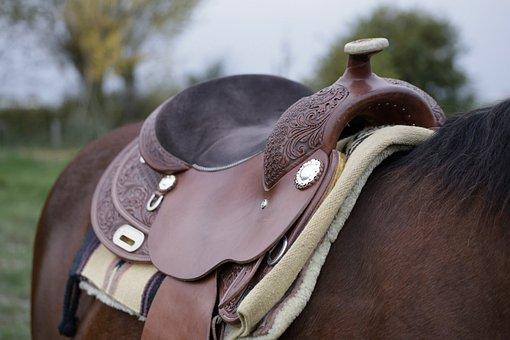 Horse, Saddle, Western, Ride