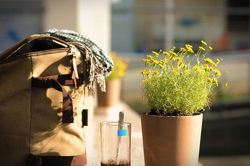 Bag, Lifestyle, Asian, Vietnam, Morning, Life, Shopping