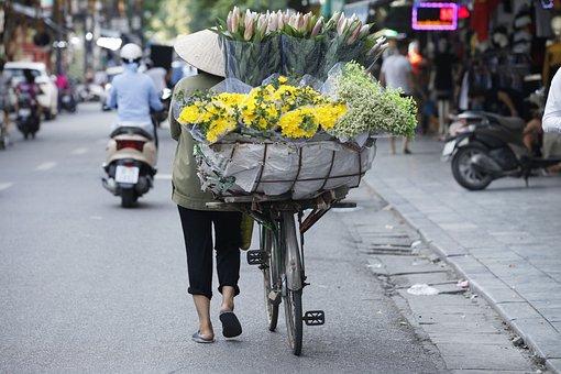 Hanoi Capital, Hanoi Flower, Flower Street Of Vietnam