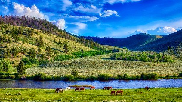 Wyoming, America, Landscape, Scenic, Mountains, Horses