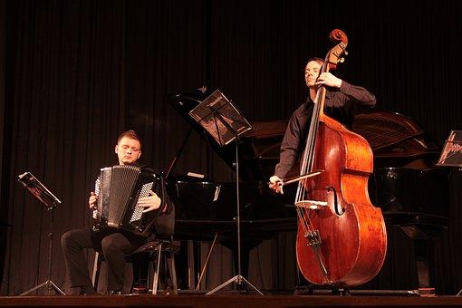 Concert, Bayan, Music, Musician, Scene, Play