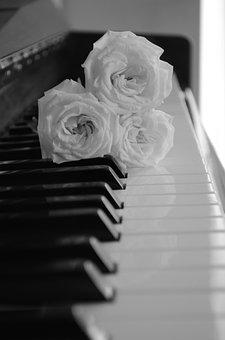 Piano, Music, Compose, Notenblatt, Clef, Keys