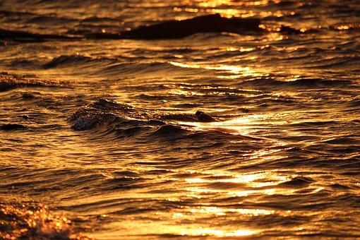 Sunset, Golden Water, Water, Sea, Golden, Evening