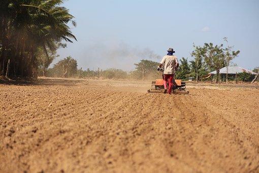 Soil, Farm, Agriculture, Dirt, Nature, Land, Field