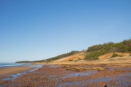 Coastal, Gulebjerg, Beach, Marbæk, Esbjerg, Sky, Water
