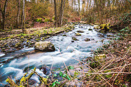 Düssel, Neanderthal, Hiking, River, Mettmann, Landscape