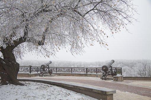 Park, Winter, Gun, Tree, Snowy, Cold, Landscape, Snow