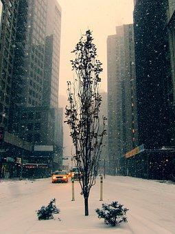 Apartments On Star, Manhattan, New York, City, Street