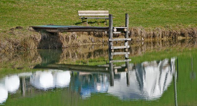 Landscape, Nature, Pond, Web, Bench, Reed, Grass