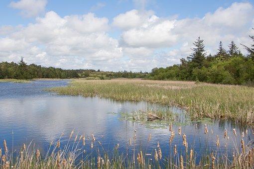 Lake, Marbæk, Esbjerg, Landscape, Sky, Clouds, Natural