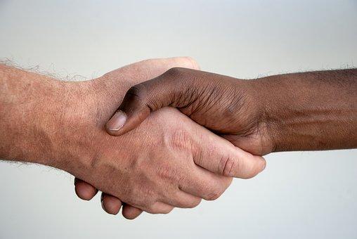 Hands, Handshake, People, Contract, Diversity, Hand