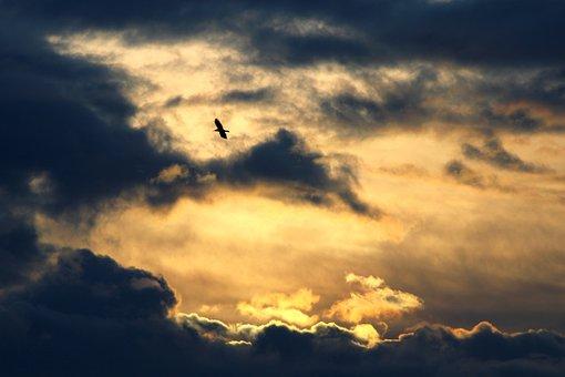 Evening Sky, Clouds, Sun, Sunset, Abendstimmung, Dusk
