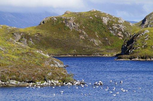 Hole, Scotland, Landscape, Water, Nature, Lake