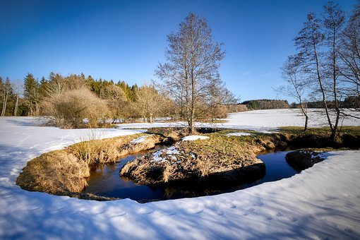 Winter, Bach, Snow, Nature, Landscape, Water, Cold