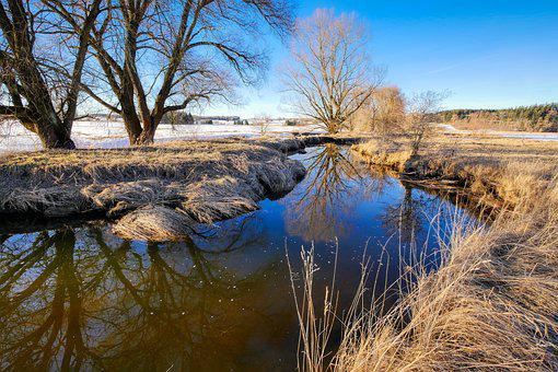 Bach, Winter, Creek, Wintry, Nature, Landscape, Water