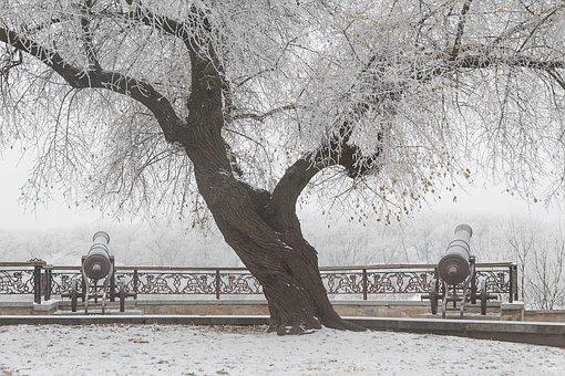 Cannon, Winter, Snow, Cold, White, Panorama, Silence