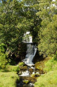 Waterfall, Highlands And Islands, Scotland, Green
