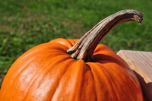 Pumpkin, October, Fall, Autumn, Orange, Halloween
