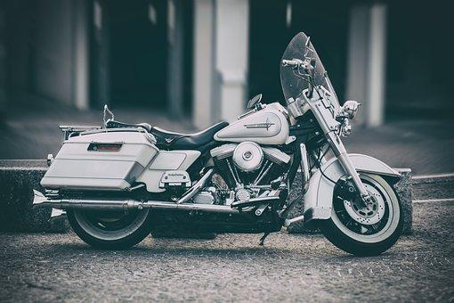 Motorcycle, Two Wheeled Vehicle, Vehicle, Harley