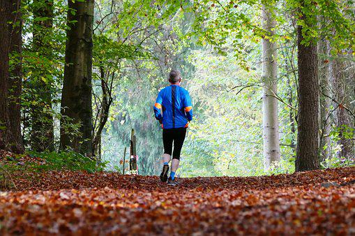 Forest, Nature, Sport, Jogger, Trees, Leaves, Senior
