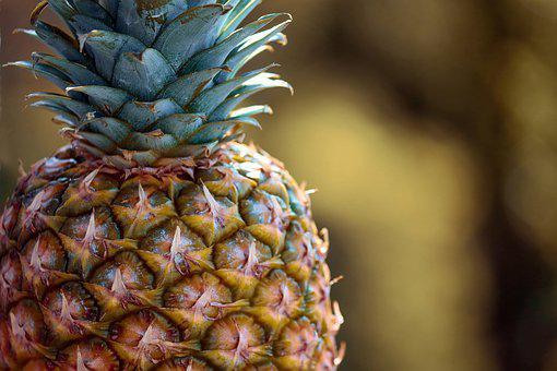 Pineapple, Tropical Fruit, Fruit, Exotic, Tropical