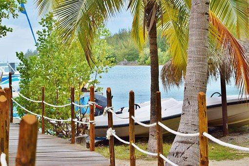 Tropical, Paradise, Ocean, Water, Sea, Vacation, Beach