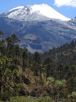 Pico De Orizaba, Mountain, Forest, Glacier, Diimine