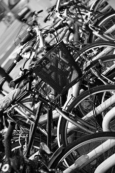 Bicycles, Bicycle Basket, Downtown, Park, Bike Racks