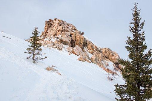 Mountain, Winter, Snow, High, Extreme, Trees